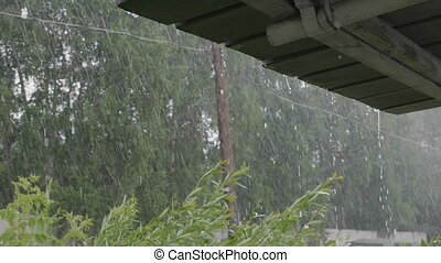 Heavy rain shower in the sunshine of springtime or summer nature