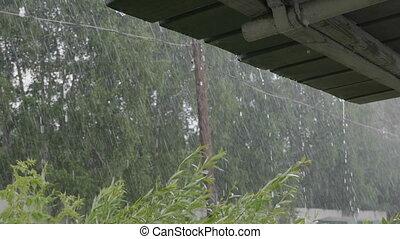 Heavy rain shower in the sunshine of springtime or summer...
