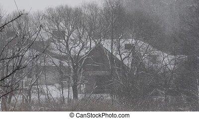 Heavy snowfall (storm)
