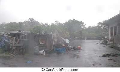 Heavy wind and gusts of rain during a typhoon
