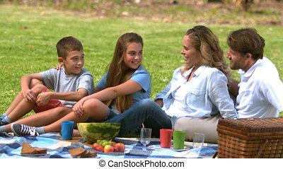 hebben, tog, gezin, vrolijk, picknick