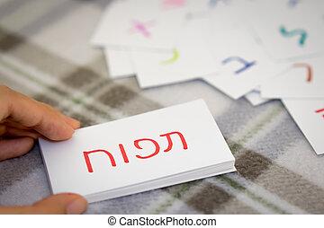 hebrew;, 學習, the, 新, 詞, 由于, the, 字母表, 卡片