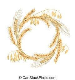 hecho, cereales, granos, spikes., espacio, trigo, guirnalda, libre, cuatro, cebada, avena, orejas, centeno