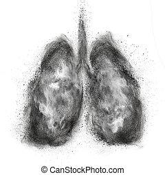 hecho, explosión, pulmones, aislado, negro, polvo, blanco