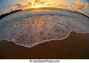 hecho, tiro, lente, ocaso, mar, playa, fisheye