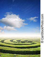 Hedge maze under a summers sky, problem solving concept
