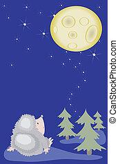 Hedgehog looks on the moon.