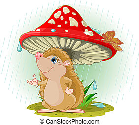 Hedgehog under Mushroom - Cute Hedgehog wearing rain gear...