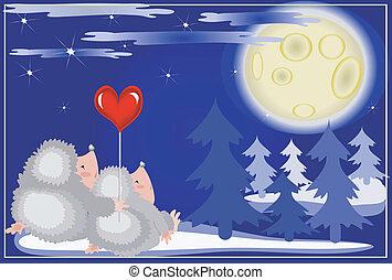Hedgehogs looks on the moon.