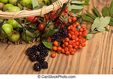 Hedgerow Fruits of Crab apple, blackberry, rose hips,...