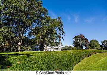 Hedgerow in Charlottetown Prince Edward Island