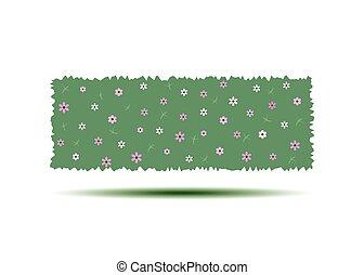 hedges., kert, függőleges, fal, landscaping., elszigetelt, ábra, karikatúra, háttér., vektor, zöld white, virágzás