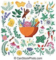heeling, sätta, örtar, medicinsk, homeopatisk, planterar