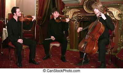 hegedűművész, és, violoncellist