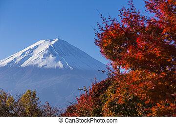 hegy. fuji, noha, piros, autumn., kawaguchi-ko., japán