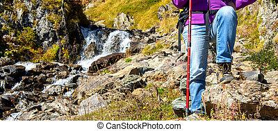 hegy, közelkép, nő, hiker's, foots