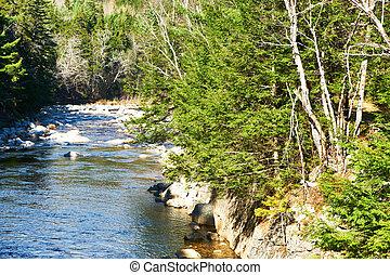 hegy, nemzeti erdő, fehér, folyó, gyors