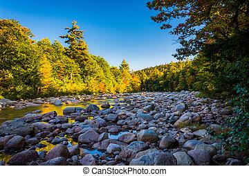 hegy, nemzeti, folyó, erdő, új, fehér, gyors, hampshir