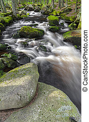 hegy, patak, nemzeti park, köztársaság, sumava-czech