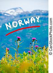 hegyek, és, fjord, alatt, norvégia