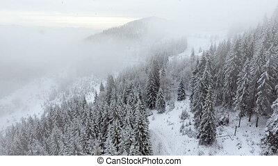 hegyek, alatt, winter., vidéki, pezazh., bitófák, befedett,...