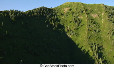 hegyek, antenna vadászterület, zöld erdő