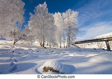 hegyek, festői, havas, jégvirág fa, táj