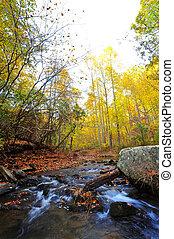 hegyek, folyik, appalachian, ősz, vad, maryland
