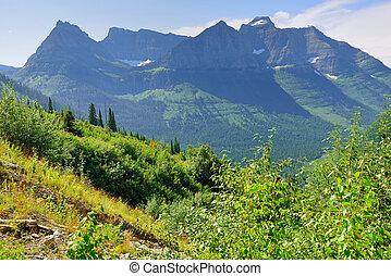 hegyek, közül, a, gleccser nemzeti dísztér