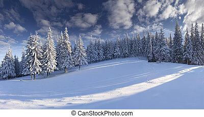 hegyek, reggel, tél, panoráma