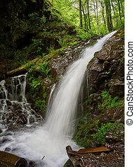 hegyek, spring., patak, eredet, erős, forest., vízesés