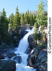 hegyek, sziklás, nemzeti, vízesés, liget, alberta, colorado