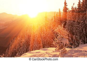 hegyek, tél