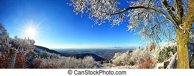 heidelberg, duitsland, winterlandschap, aanzicht