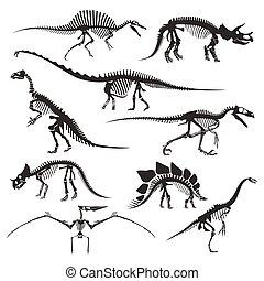 heiligenbilder, tiere, dinosaurierer, skelette,...