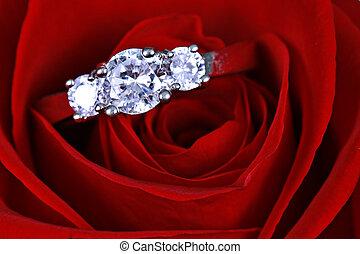 heiraten, rose, sie, wille, goldringe, me?