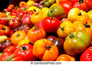 heirloom, tomates, sortido, cores