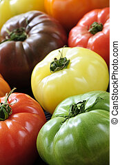 Close up group of multi colored heirloom tomatoes