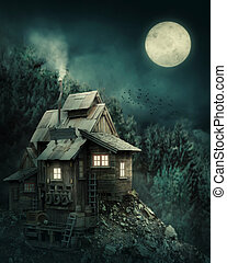 heks huis, in, mysterieus, bos