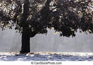 helado, árbol
