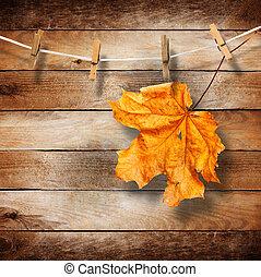 helder, autumn leaves, op, de, oud, houten, achtergrond