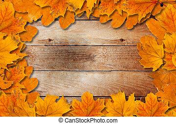 helder, gevallen, autumn leaves, op, een, houten, achtergrond