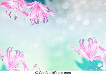 helder, kleurrijke, lelie, flowers., floral, achtergrond.