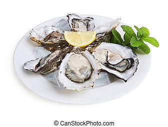 helft, oesters, dozijn