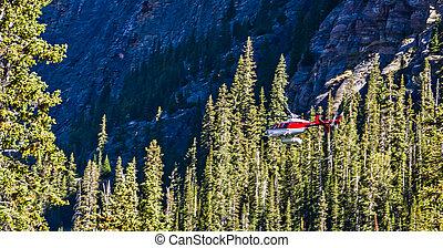 helicóptero, campo