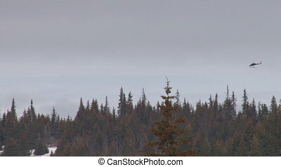 Helicopter flies low over treeline - A helicopter flies from...