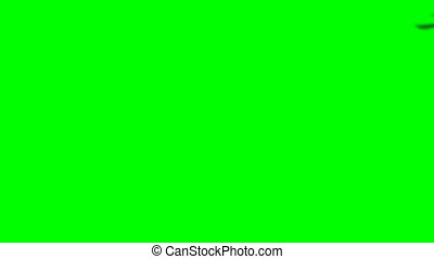 Render of helicopter Black hawk fly on green screen