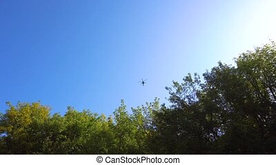 Helicopter flying over trees in the forest in summer day