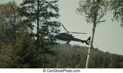 Helicopter in forest makes landing down among trees. Civil aviation checks in mountain. Aerial mechanism in sky in fall on top makes an above of area. Mechanism with rotor with pilot on board flies over forest.