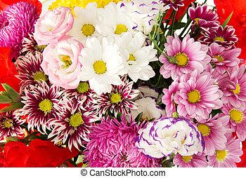 hell, flowers., hintergrund